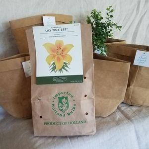 Lily Bulbs & Kraft Pots Bundle